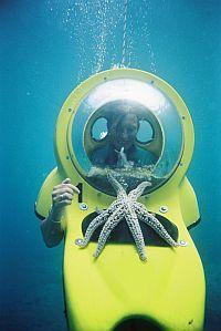 BOB diver with sea star