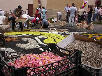 making a carpet of flowers La Orotava