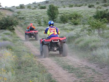 quad bikes 2